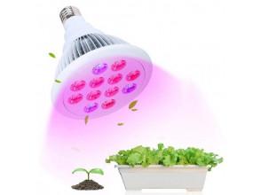 Светильники для растений помогают быстрому росту