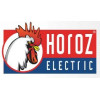 HOROZ Electric.TEB Electric (Турция)