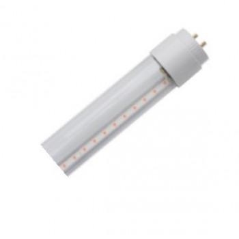 Лампа светодиодная Gauss Elementary T8 Glass 600mm G13 10W 4000K 4K матовая/стекло 93020